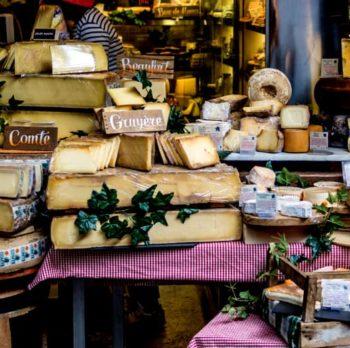 Gatunki i podział serów